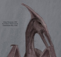 sketch by Patty Carson, eyewitness of the huge pterosaur of eastern Cuba